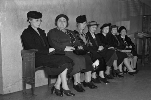spectators dazey trial